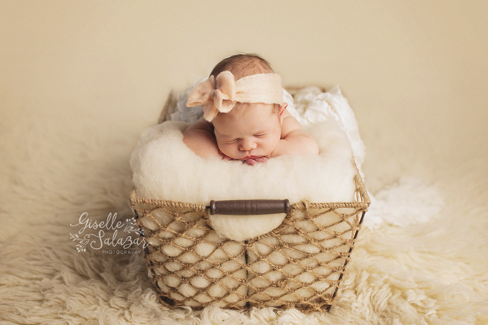 Basking ridge nj newborn photography